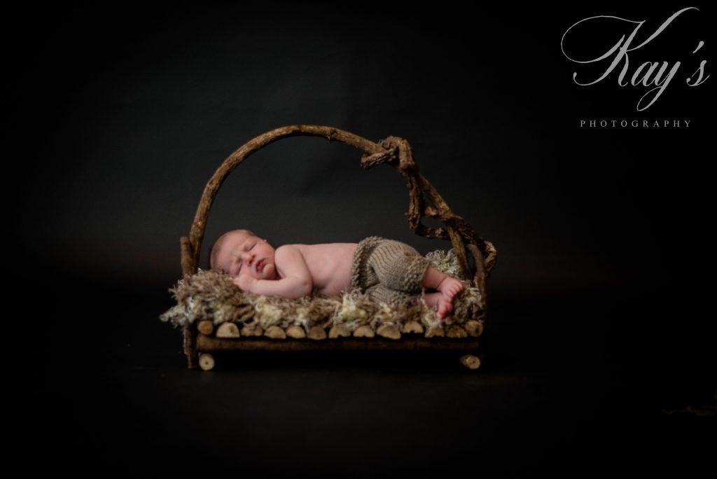 newborn portraits long island