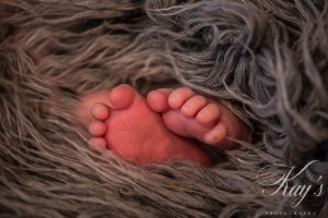 newborn photographer long island